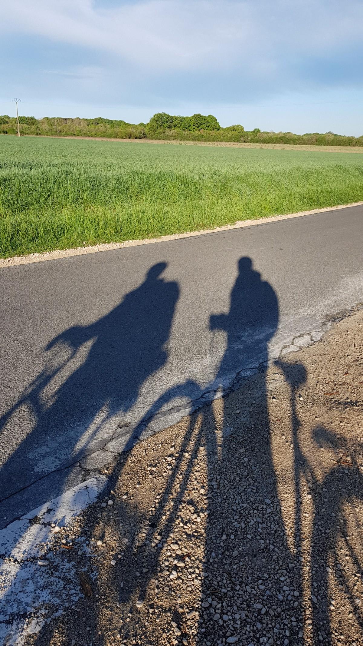 Visiter la Loire à vélo en amoureux